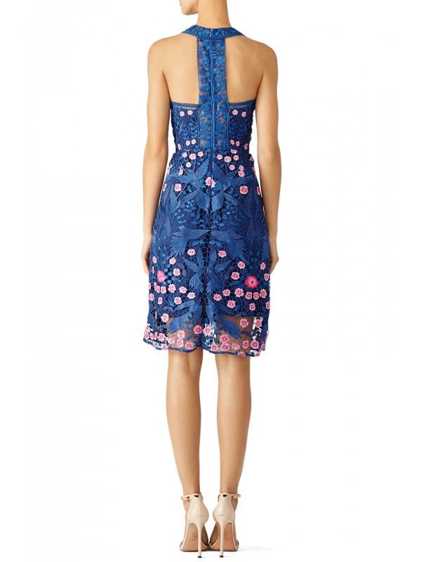 Blue Bird Lace Dress